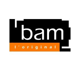 logo_bam